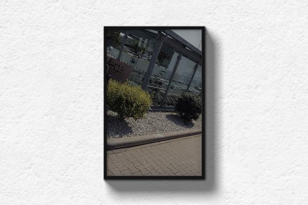 Grünschnitt-Gestaltung-Galerie